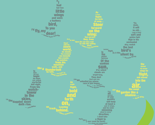 Rbirdsillustrator_thumb