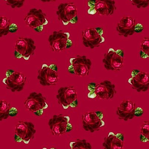Roses test with leaves