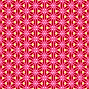 Pretty Patterns Damask Stars Floral - Nov 2012 - 36
