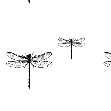 Black and white dragonfly fabric by vaahtokarkkimonsteri on Spoonflower - custom fabric