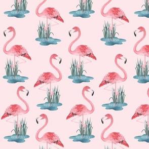 Flamingo Pink