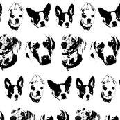 Dogs_shop_thumb
