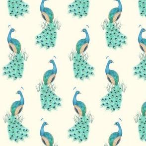 Peacock Cream