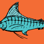 Orange and Turquoise Marlin