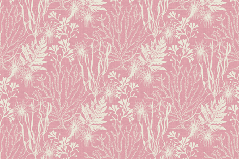 Poseidon Pink fabric by littlerhodydesign on Spoonflower - custom fabric