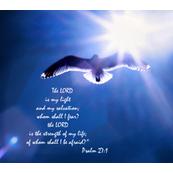 Psalm_27-1