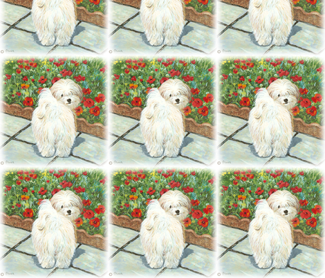 Havanese Dog & Poppies fabric by greerdesign on Spoonflower - custom fabric