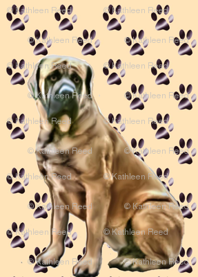 mastiff_with_pawprints