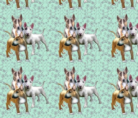 1591245_rbull_terriers_shop_preview