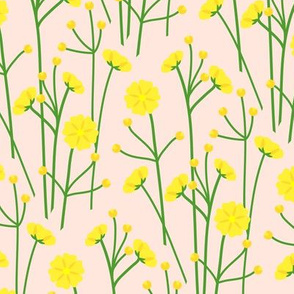 Buttercups - wheat