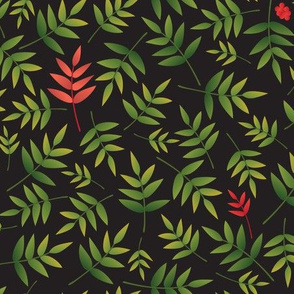 Nandina Leaves-black