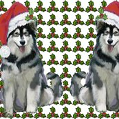 1593551_ralaskan_malamute_christmas_shop_thumb