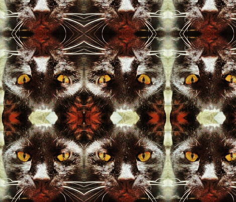 Black Cat fabric by bernadettemchugh on Spoonflower - custom fabric