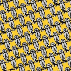 Psi Upsilon Owls
