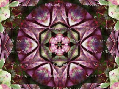 Kaleidescope 0946