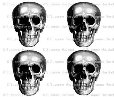 4 skulls on a yard #1