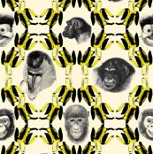 Rrbananas_and_monkeys_shop_thumb