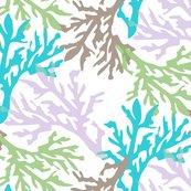 Coral_c2_shop_thumb