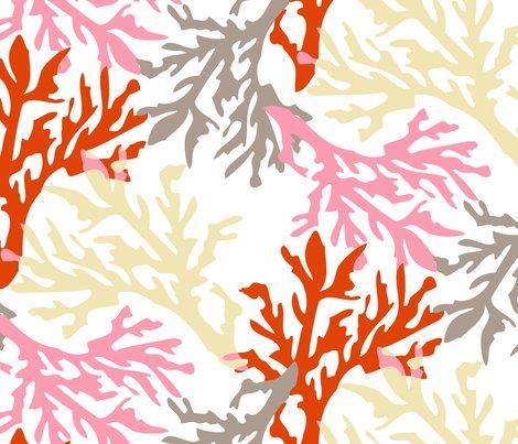 Coral_c1_shop_preview