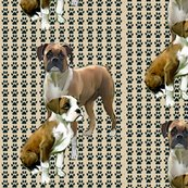 1598644_rtwo_boxers_for_fabric_shop_thumb