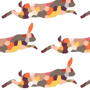 hopping hare