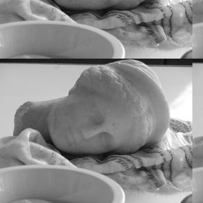 Venus resting