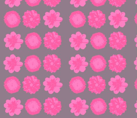 Pink_flower_on_grey_background_ed_shop_preview