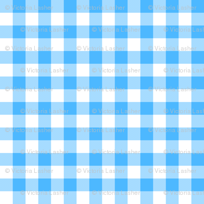 utensiless_blue_gingham