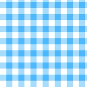 Utensiless_blue_gingham_shop_thumb