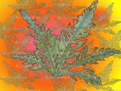 leafveins2