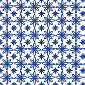 Pattern With 2 Flowers in White and Blue
