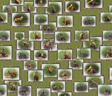 fox_2_pattern_resized fabric by jktauzell on Spoonflower - custom fabric