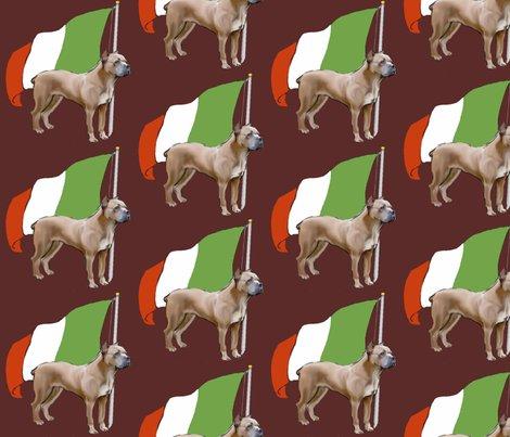 1606816_rcane_corso-_italian_flag_shop_preview