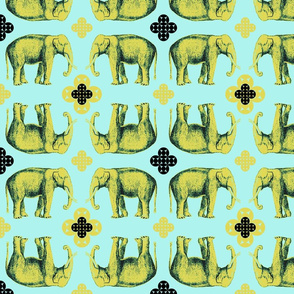 Elefante - golden chartreuse and seafoam