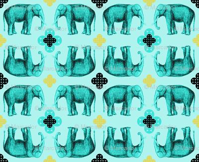 elefante4