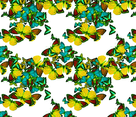 flutter3 fabric by marcador on Spoonflower - custom fabric