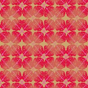 Pink_Rose_Argyle