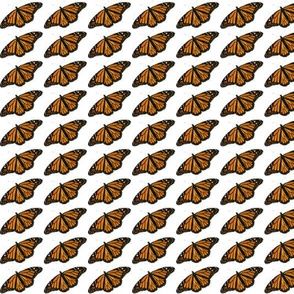 Monarch Butterfly Small