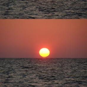 06202010_039