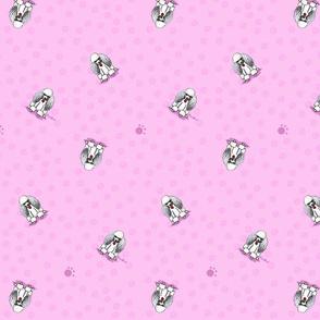Poodles On Pink