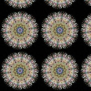 cd_fractals_G