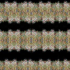 cd_fractals_F