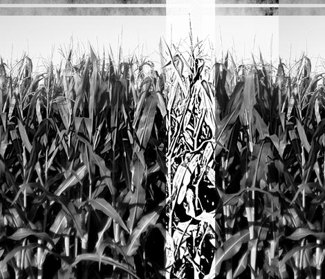 Corn fabric by feebeedee on Spoonflower - custom fabric