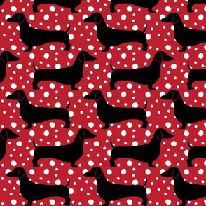 Polka Dachshunds
