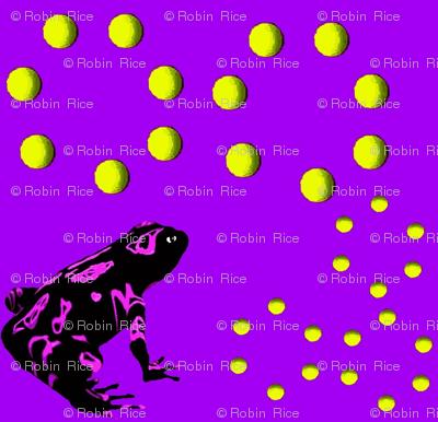 Mesmerizing Frogs