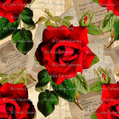 Red Rose on vintage ephemera