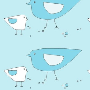 bird_family3