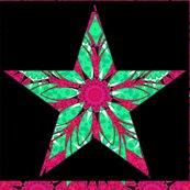 Rrsunburst_star_collage_1_shop_thumb