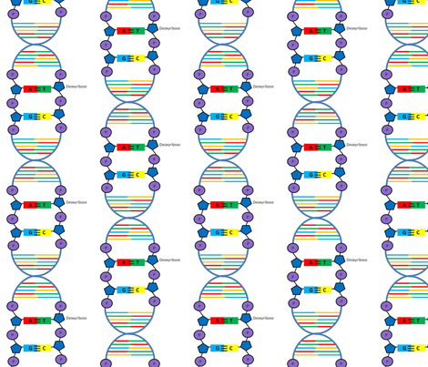 DNA with a little more detail fabric by amysworlds on Spoonflower - custom fabric
