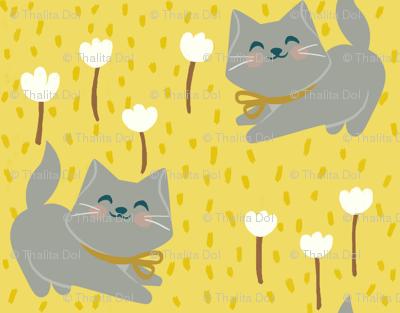Sunny Morning Kittens
